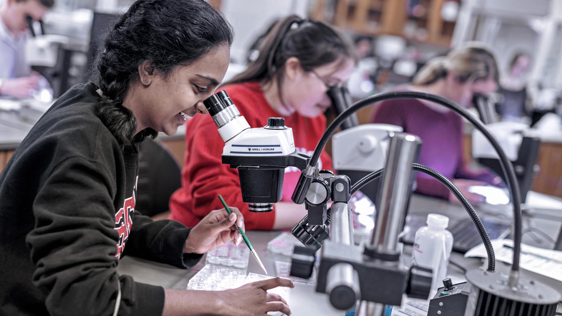 students looking through microscopes in a lab