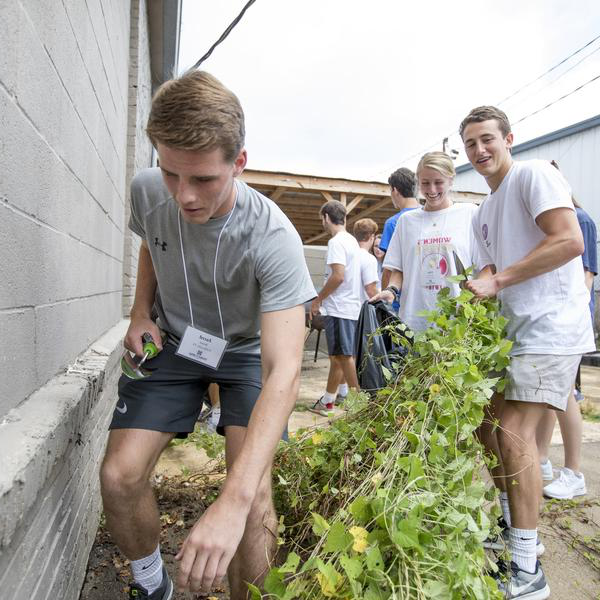 Some students work in a garden up against a wall
