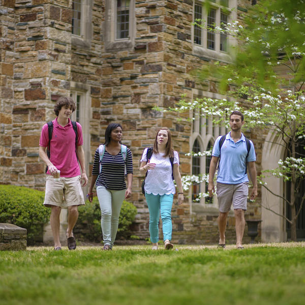 Four students stroll through campus on a beautiful Spring day