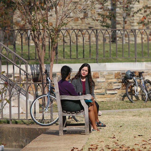 Two students talking on a bench