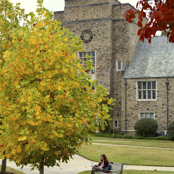 palmer hall in the fall